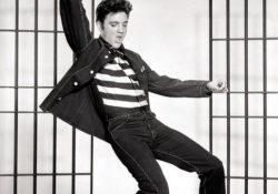 Elvis gettin Jiggy